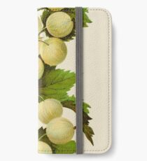 Canadian Horticulturalist 1888-96 - Downing Gooseberries iPhone Wallet/Case/Skin