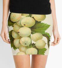 Canadian Horticulturalist 1888-96 - Downing Gooseberries Mini Skirt