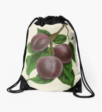 Canadian Horticulturalist 1888-96 - Fellemburg Plums Drawstring Bag