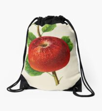 Canadian Horticulturalist 1888-96 - Hubbardston Nonsuch Apple Drawstring Bag