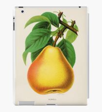Canadian Horticulturalist 1888-96 - Howell Pear iPad Case/Skin