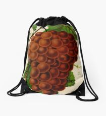 Canadian Horticulturalist 1888-96 - Vergennes Grapes Drawstring Bag