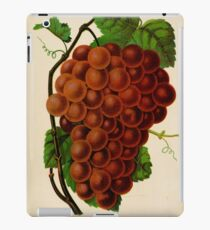 Canadian Horticulturalist 1888-96 - Vergennes Grapes iPad Case/Skin