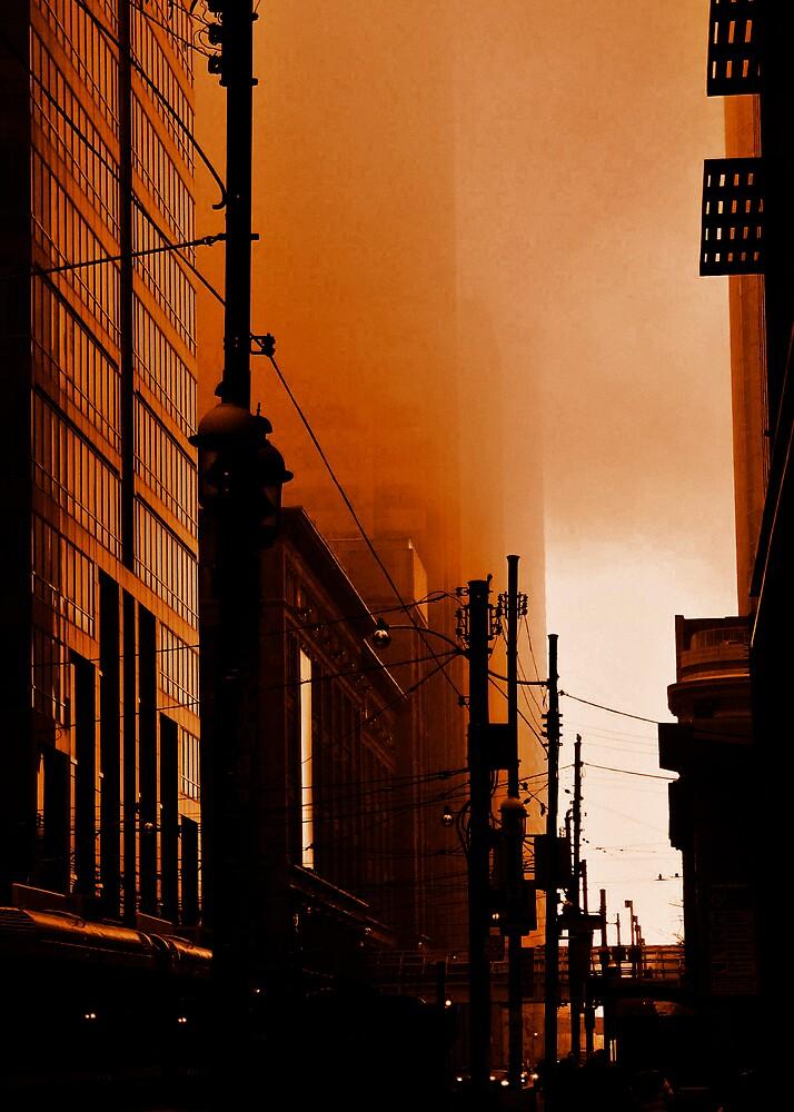 Dark City by Erin Butler