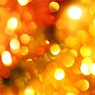 Christmas Lights by Maria Meester