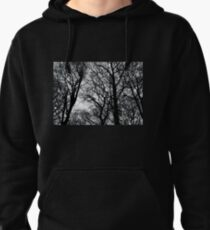 Bare Trees Pullover Hoodie