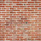 Brick Wall by Maria Meester