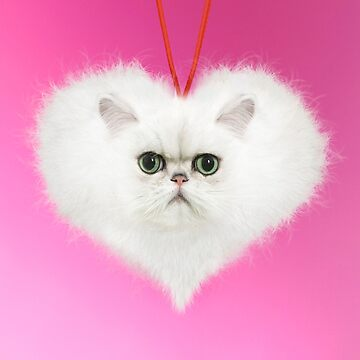 Fluffy white Persian cat heart by ArdeaOnline