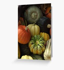 Ornamental Squash Greeting Card