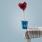 balanced heart by Joana Kruse