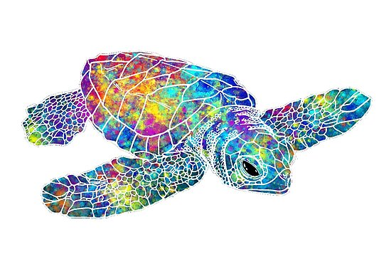 Quot Sea Turtle Watercolor Art Quot Poster By Maryedenoa Redbubble