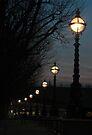 London Pearls by George Parapadakis ARPS (monocotylidono)