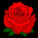 Red Rose Print by pda1986