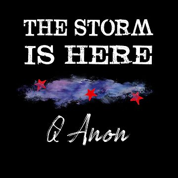 Q Anon I Am The Storm by Dianne402