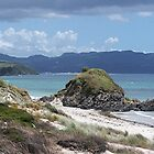 Autumn time at Tawharanui......!! by Roy  Massicks
