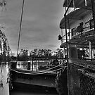 Ps Marion - Mannum SA by Dave  Hartley