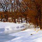 Frozen Stream.................... by Larry Llewellyn