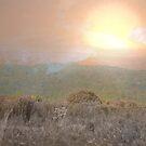 Alien Sunrise by S McKoy