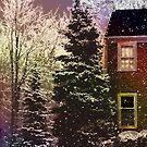 Is it Snowing at your house? by Judi Taylor