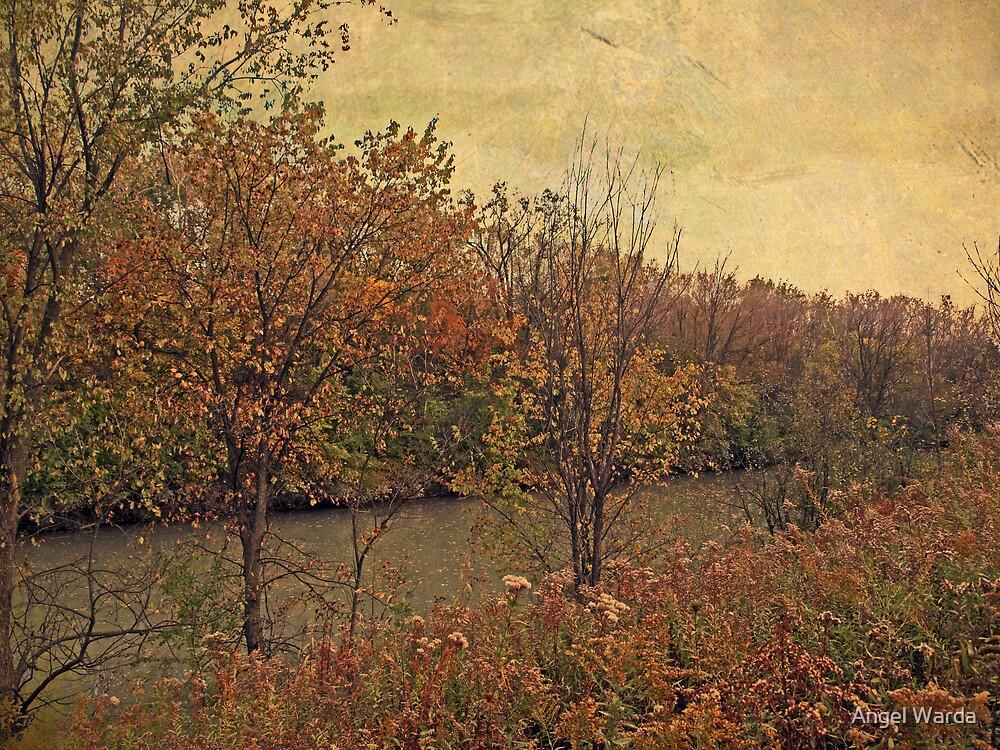 autumn river by Angel Warda