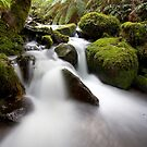 Cement Creek by Jared Revell