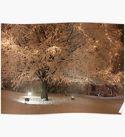 Tree in the Snow Poster