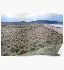 view of dunes at the maharees Poster
