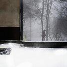 warm wave by Nikolay Semyonov