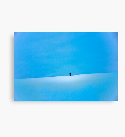 Out Walking Canvas Print