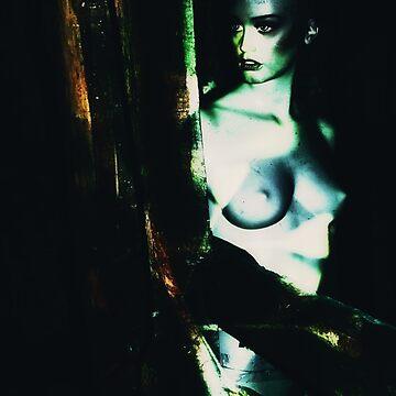 Mannequins 3 by AndreaZaaijer