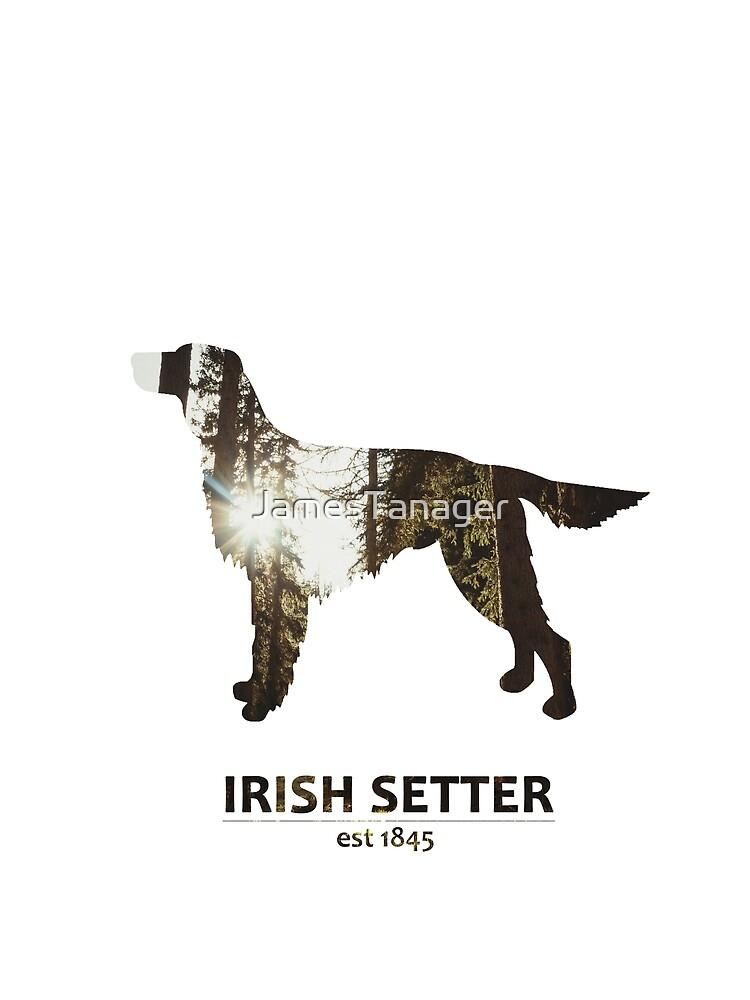 Irish Setter Chien Personnalisé Anniversaire Carte de vœux