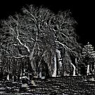 Cemetary by TLWhite