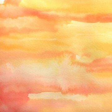 Apricot Sunset by rosemaryann