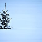 Alone by Robert Goulet