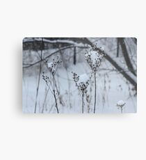 Just a sprinkle of snow Metal Print
