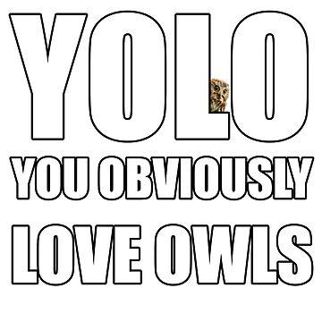 YOLO Owl by craigistkrieg