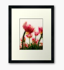 Pink Tulips for Mom Framed Print