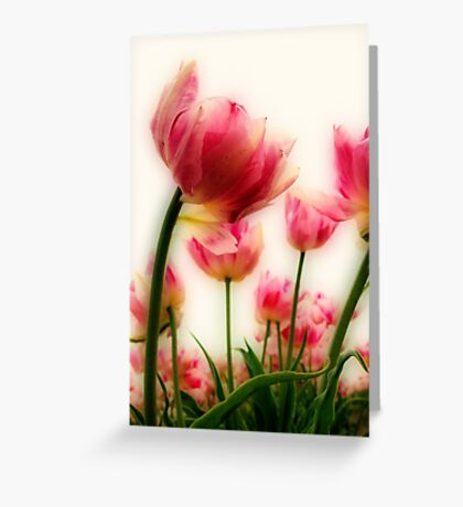 Pink Tulips for Mom Greeting Card