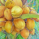 Golden Coconuts by joeyartist
