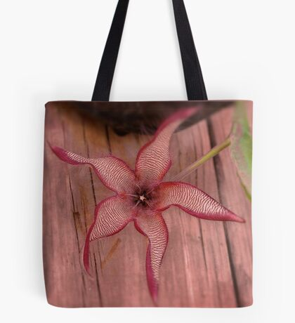 DIFFERENT FACES OF THE STAPELIA GIGANTEA - Giant carrion flower - REUSE AASBLOM Tote Bag