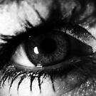 Eye Opener by Dan Casey Campbell