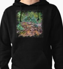 The Atlas Of Dreams - Color Plate 169 Pullover Hoodie