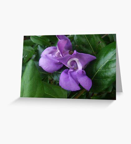 """Purple Beauty"" Greeting Card"