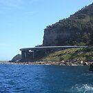 Sea Cliff Bridge by Cameron O'Neill