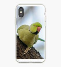 Rose-ringed Parakeet 04 iPhone Case