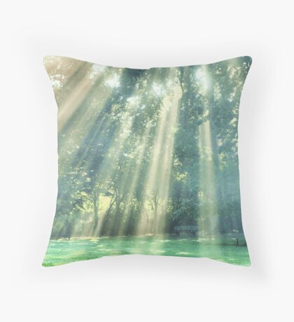 (edited) one misty morning Throw Pillow