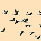 Fifteen Common Cranes Flying on Peach Background by visualspectrum