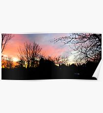 Red Sky Sunrise: West Norwood, London Poster