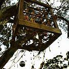 TripOut Tree by webgrrl