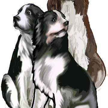 Springer Spaniels  by IowaArtist